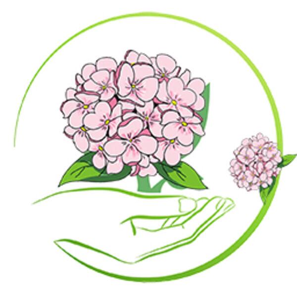 Градинска хортензия  Pink Forever & Ever® Teller